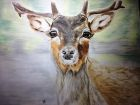 A Deer Appeared (Watercolour and pastels)<br />20x16