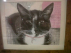 Kirstie's Cat (Watercolour and pastels)