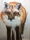 Fox in snow (Watercolour and pastels)<br />12x10