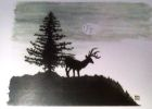 Stag Under a Full Moon  (Watercolour )